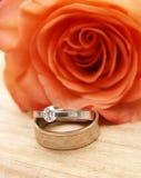Los anillos de bodas en un rojo se levantaron Fotos de archivo libres de regalías
