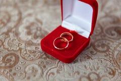 Los anillos de bodas se cierran para arriba Imagen de archivo libre de regalías