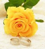 Los anillos de bodas y se levantaron Foto de archivo libre de regalías