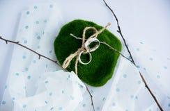 Los anillos de compromiso de plata musgo, cordón de la cuerda ramifican, paño en guisantes Imagen de archivo