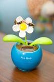 Los anillos en las flores, en una caja, en una tela blanca en los juguetes, colores, casandose los detalles, anillos de bodas Imágenes de archivo libres de regalías