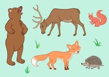 Los animales del bosque Imagen de archivo libre de regalías