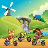 Los animales domésticos van para un paseo en el campo. stock de ilustración