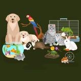 Los animales domésticos caseros fijados, hámster del pez de colores del loro del perro del gato, domesticaron animales Imagenes de archivo