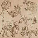 Los animales pesados - vector el paquete, dibujos de la mano Imagen de archivo libre de regalías