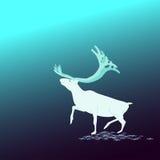 Los antecedentes Ciervos del norte Imagen de archivo