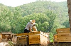 Los apicultores en el trabajo Imagen de archivo