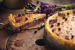 Los arándanos y el pastel de queso del lavander sirvieron en el horno con las bayas y las flores, aún vida para la pastelería, to Foto de archivo libre de regalías