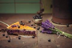 Los arándanos y el pastel de queso del lavander sirvieron en el horno con las bayas y las flores, aún vida para la pastelería, to Fotos de archivo libres de regalías