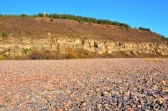 Los arbustos salvajes de espino amarillo en un fondo de acantilados y de guijarros arenosos del río Día claro del otoño Paisaje foto de archivo libre de regalías