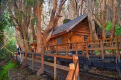 Los Arrayanes, εθνικό πάρκο, Αργεντινή Στοκ εικόνες με δικαίωμα ελεύθερης χρήσης