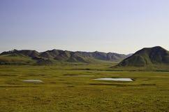 Los arroyos en Alaska Fotografía de archivo