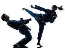 Los artes marciales del vietvodao del karate sirven la silueta de los pares de la mujer Imagen de archivo libre de regalías