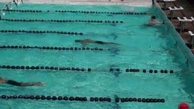 Los atletas de sexo masculino riguroso están entrenando en la braza para la competencia de la natación que viene metrajes
