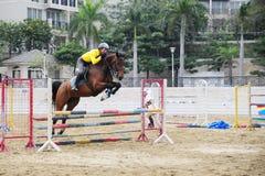 Los atletas entrenan a un caballo. En el patio. Fotografía de archivo libre de regalías