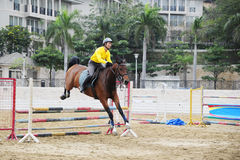 Los atletas entrenan a un caballo. En el patio. Fotografía de archivo