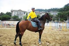 Los atletas entrenan a un caballo. En el patio. Foto de archivo libre de regalías
