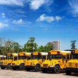 Los autobuses escolares típicos del americano reman en un estacionamiento Fotografía de archivo libre de regalías