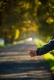 Los autostopistas dan intentar parar un coche en el camino del otoño fotos de archivo