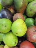 Los Avocados Lizenzfreie Stockfotografie