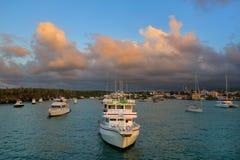 Los barcos anclados en academia aúllan cerca de Puerto Ayora en Santa Cruz Is Imagen de archivo libre de regalías