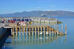 Los barcos de Kaikoura Nueva Zelanda del reloj de la ballena se abren para el negocio Imagen de archivo