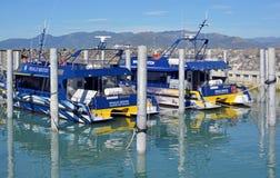 Los barcos de Kaikoura Nueva Zelanda del reloj de la ballena se abren para el negocio Imágenes de archivo libres de regalías