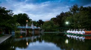 Los barcos del cisne en el público de Boston Fotos de archivo libres de regalías