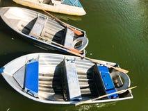 Los barcos y los catamaranes en un lago de la charca en un canal del río con agua florecida verde se amarran en la orilla fotos de archivo libres de regalías