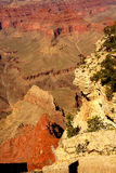 Los barrancos llevan al río Colorado Fotografía de archivo libre de regalías