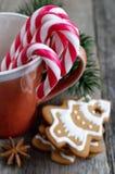 Los bastones de caramelo de la Navidad en taza con el pan de jengibre y el abeto ramifican Fotografía de archivo libre de regalías