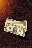 Los billetes de banco del dólar cobran el dinero en la tierra del suelo, renta en agricultur Imagen de archivo