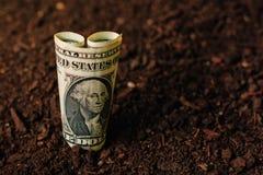 Los billetes de banco del dólar cobran el dinero en la tierra del suelo, renta en agricultur Imágenes de archivo libres de regalías