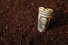 Los billetes de banco del dólar cobran el dinero en la tierra del suelo, renta en agricultur Foto de archivo