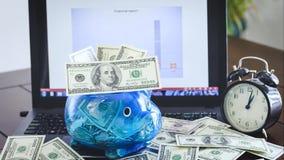 Los billetes de banco del dinero del dólar aumentan y disminuyen a una hucha almacen de metraje de vídeo