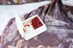 Los Bloodworms, el motyl o las larvas del mosquito como el cebo para los pescados durante invierno hiela la pesca, están en envas imágenes de archivo libres de regalías