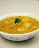 Los bocados diarios sanos sabrosos de la comida del queso de Paneer comen Fotografía de archivo libre de regalías
