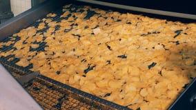Los bocados fritos y engrasados de la patata se están moviendo a lo largo del transportador almacen de metraje de vídeo