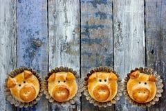 Los bollos del pan del cerdo, idea divertida de la hornada formaron caras guarras lindas foto de archivo