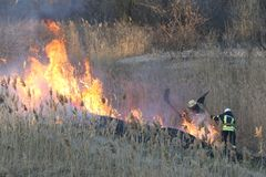 Los bomberos luchan un incendio fuera de control en primavera imagen de archivo