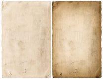 Los bordes de papel de la hoja aislaron el fondo blanco Foto de archivo libre de regalías