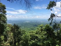 Los bosques y el cielo Imagenes de archivo