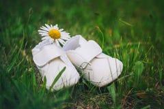 Los botines del bebé con la manzanilla imagen de archivo