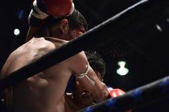 Los boxeadores en la etapa luchan ferozmente fotografía de archivo libre de regalías