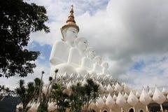 Los 5 Buda foto de archivo libre de regalías