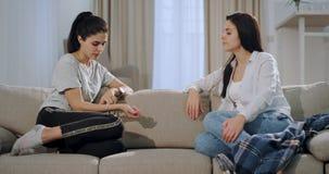 Los buenos amigos dos señoras atractivas tienen un rato casero junto mientras que los sientan en el sofá que charlan juntos y almacen de video