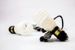 Los bulbos del ahorrador de energía refrescan luz del día Foto de archivo