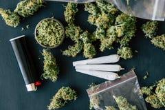 Los cáñamos machacados de la mala hierba en una tabla negra escardan la macro común de la marijuana de los brotes del cáñamo con  imagen de archivo libre de regalías