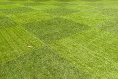 Los céspedes verdes enormes Fotografía de archivo libre de regalías