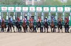 Los caballos saltan la puerta el comenzar Imagen de archivo